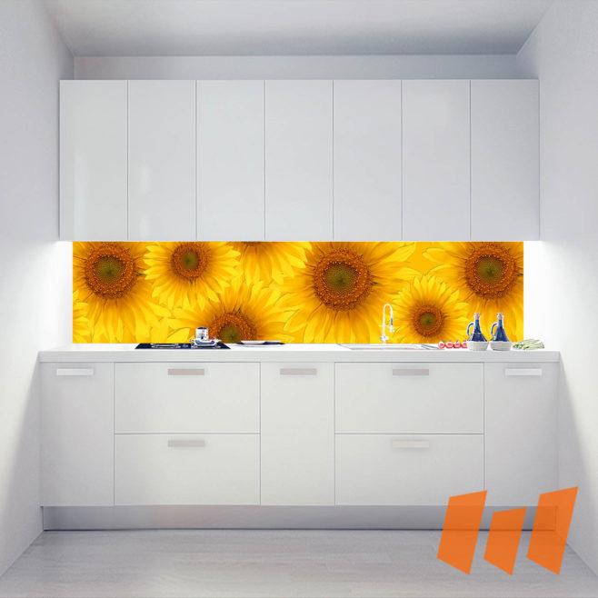 Küchenrückwand Pro_Ku01_184a