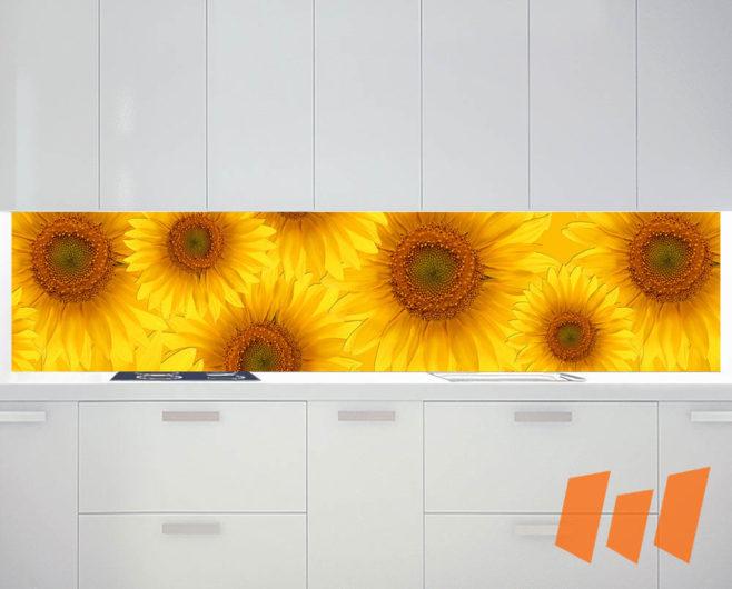 Küchenrückwand Pro_Ku01_184b